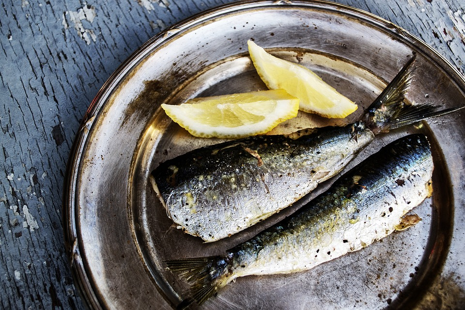 nutricionist izgubiti kilograme finjak portal riba proteini