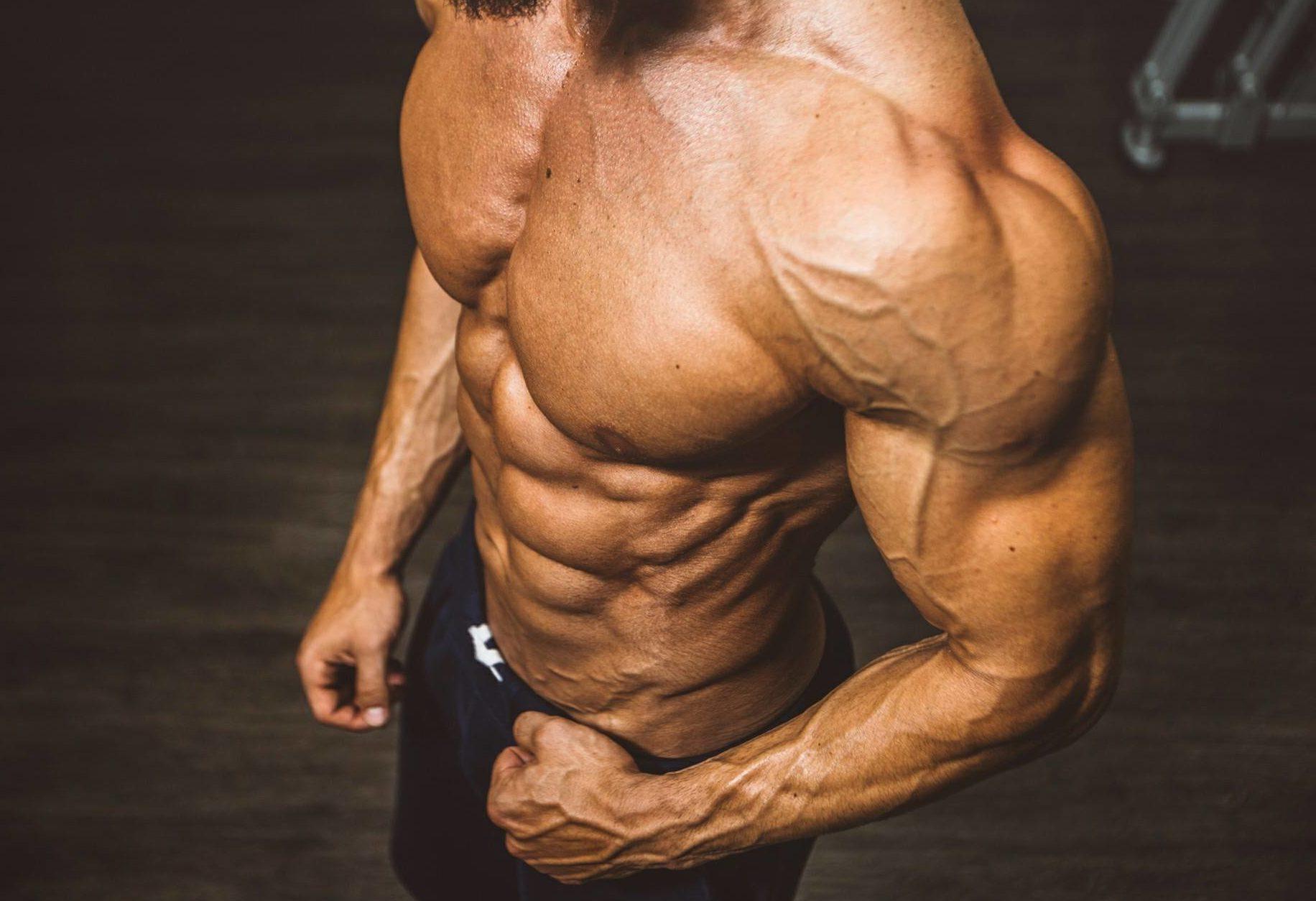 Kako do trbušnih mišića i koje su najbolje vježbe za trbušnjake finjak portal trbušnjaci savršeno tijelo slaven vico izgled trbušnjaci