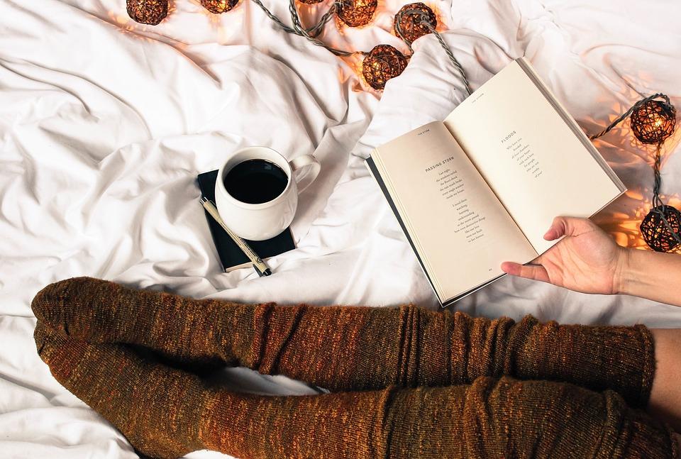 Može li čitanje knjiga prerasti u uspješan biznis alis marić knjige čitaj knjigu projekt uspjeh knjiga blog o knjigama svatko što želi